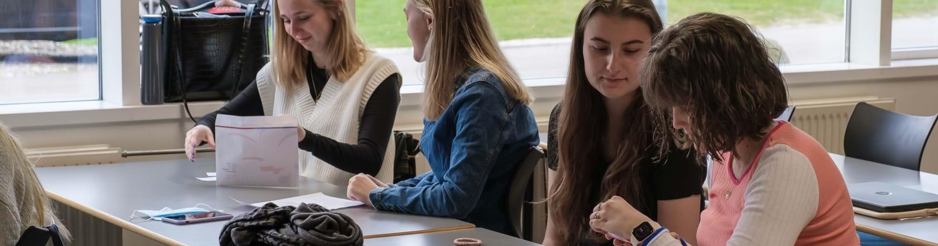 Elever som samarbejder