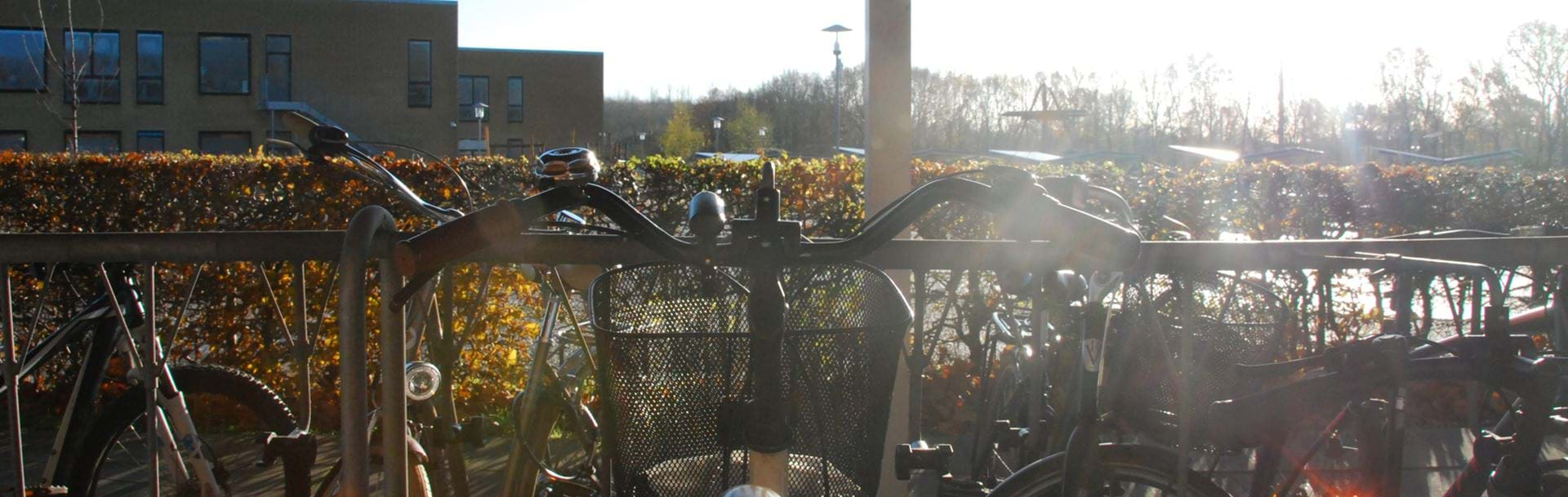 Cykelstativ fyldt med cykler