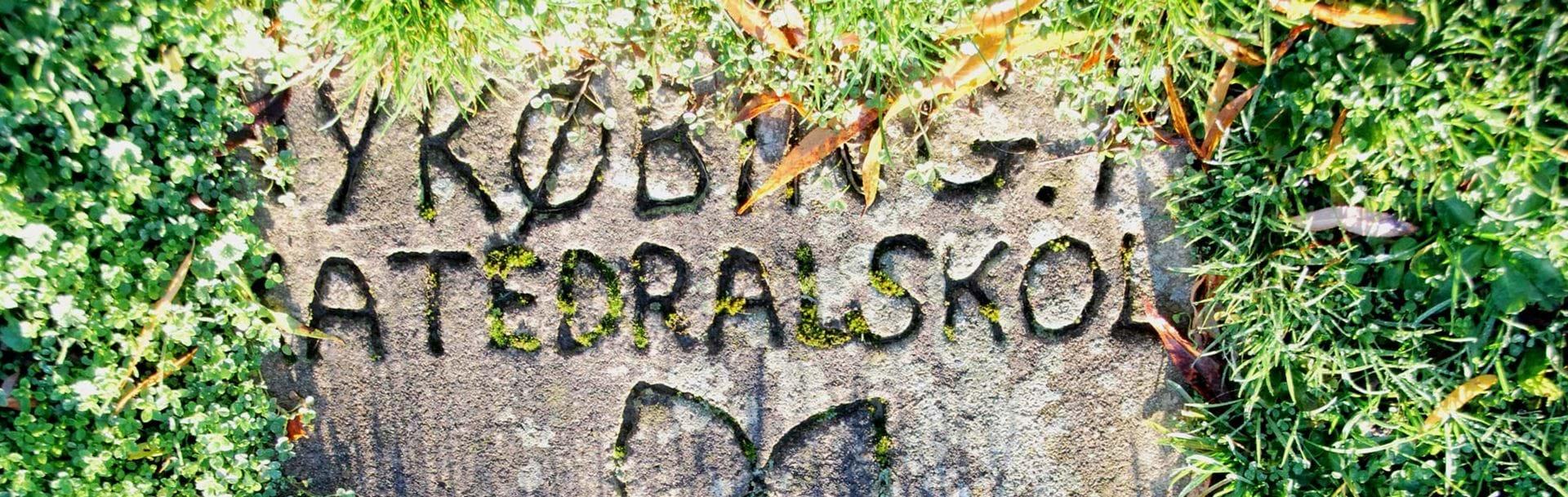 Sten i græsplæne med Nykøbing Katedralskole 500 år graveret i